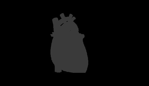 心臓のシルエットのイラスト
